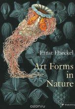 Art Forms in Nature / Формы искусства в природе